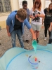 Museumstag_14